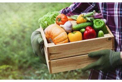 Comer verduras crudas y sus beneficios
